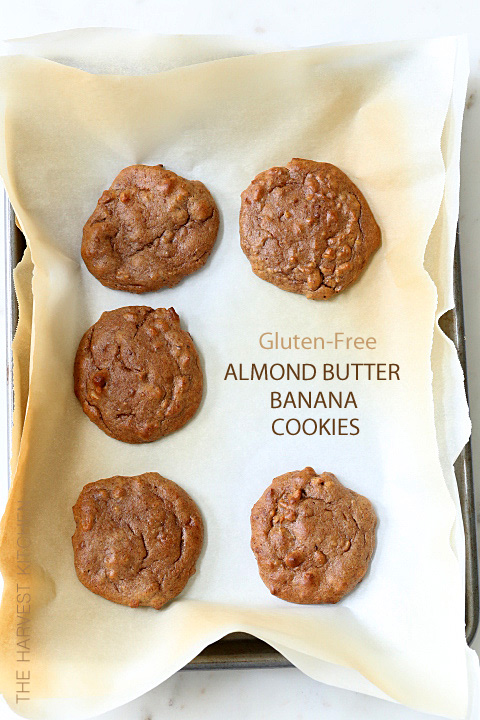 Almond Butter Banana Cookies are made with almond butter, bananas and dates and absolutely no flour at all