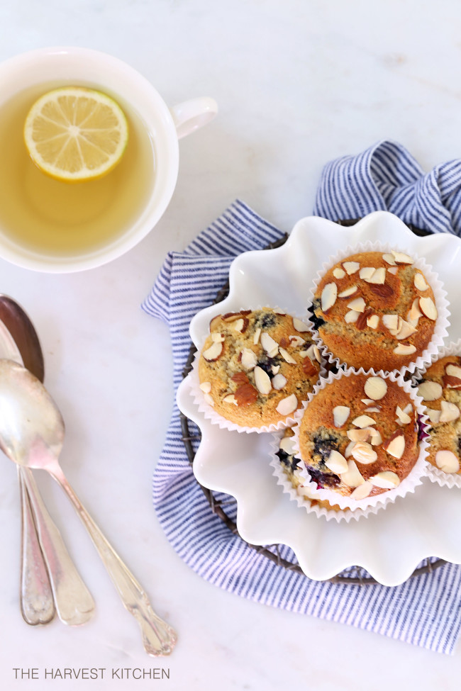 These Gluten Free Lemon Blueberry Muffins are made with almond flour, sweetened with honey, loaded with blueberries, have a hint of lemon, and are completely habit-forming