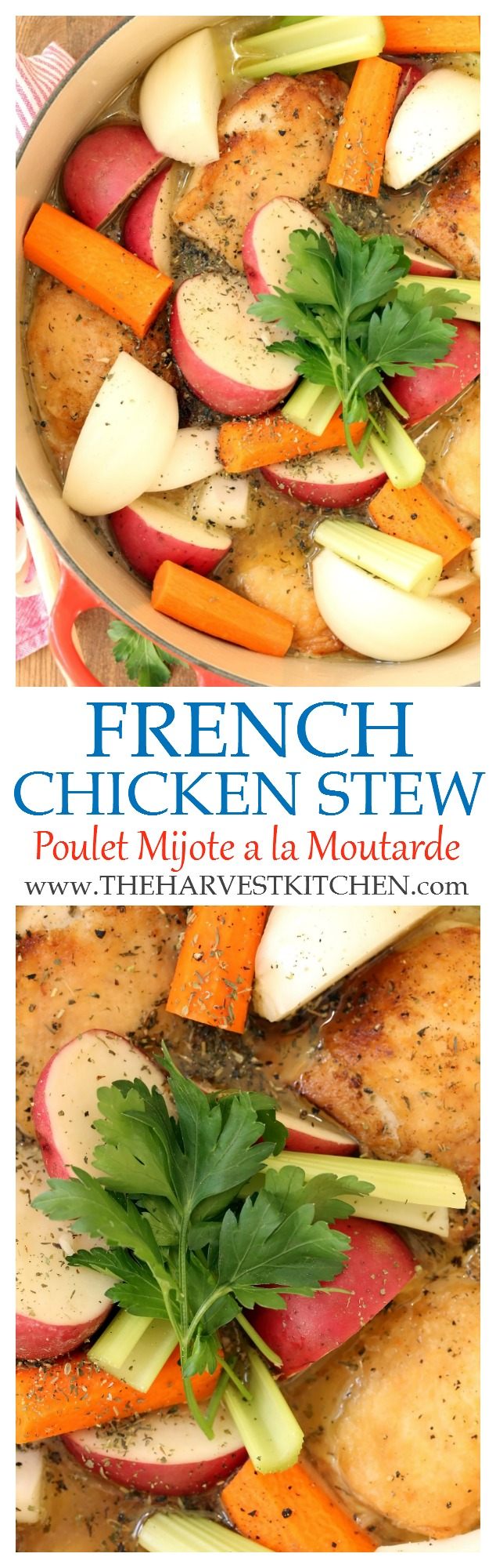 french-chicken-stew