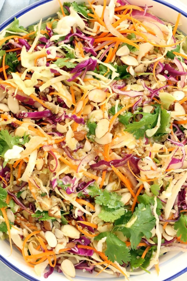 This Asian Quinoa Salad is made with green and red cabbage, carrot, cilantro, onion and quinoa all tossed in a delicious Asian ginger salad dressing