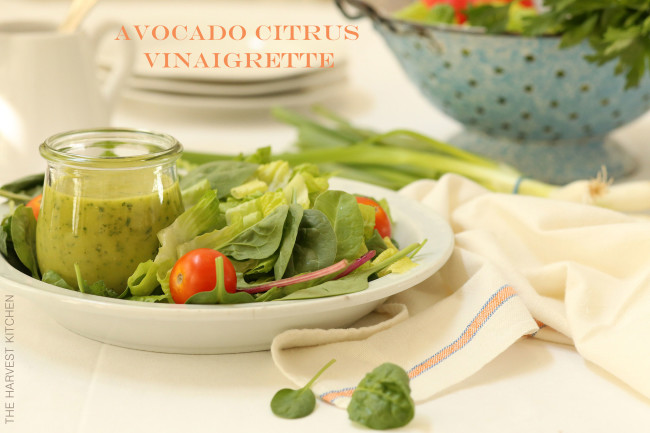 This creamy Avocado Citrus Vinaigrette is made with avocado, cilantro, orange juice, lime, olive oil and a little jalapeno
