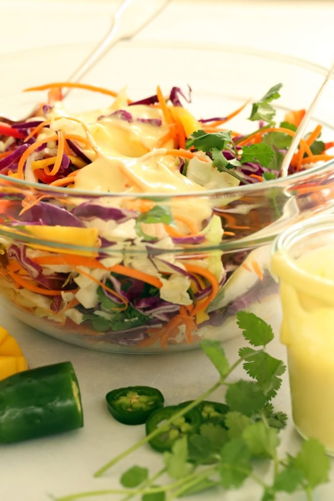 This Mango Slaw is a delicious mix of green cabbage, red cabbage, red pepper, carrots, cilantro and mango all tossed in a creamy citrus coleslaw dressing.