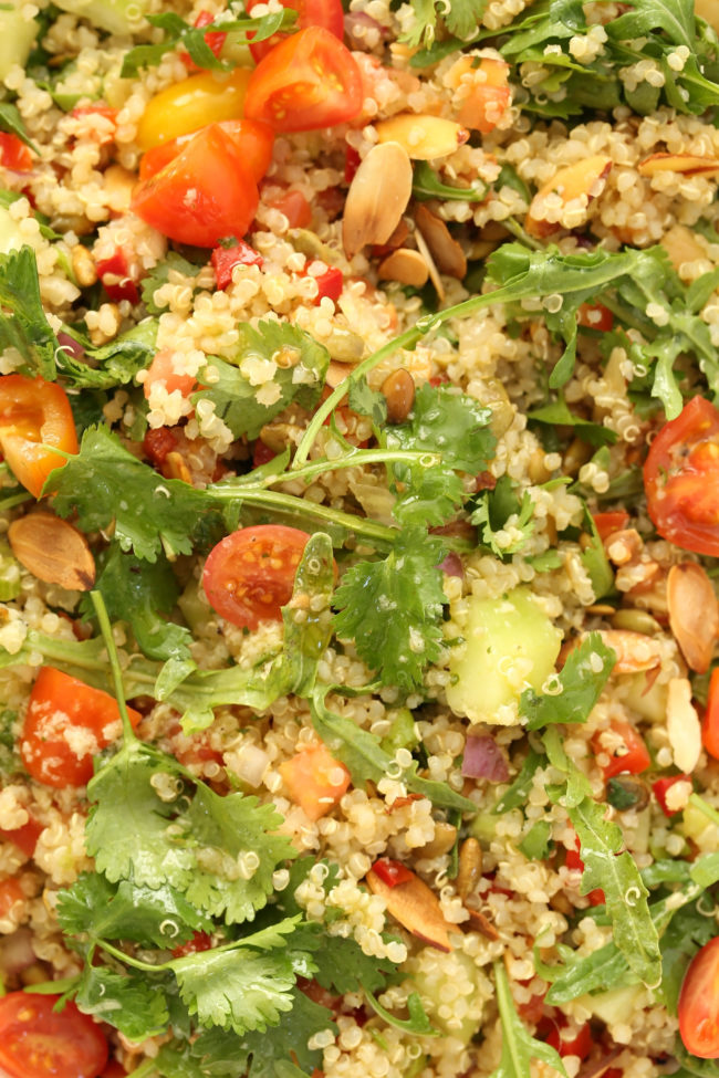 This Mexican Quinoa Salad is a powerhouse salad packed withquinoa, cucumber, arugula, red pepper, pico de gallo, toasted nuts and lots of fresh cilantro