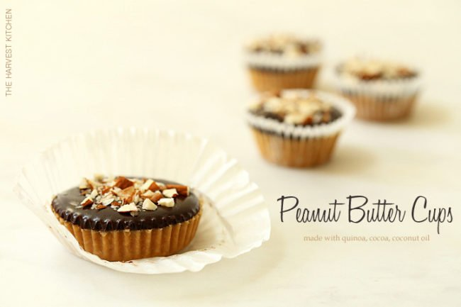 These Healthy Peanut Butter Cups are made with peanut butter, coconut butter, dark chocolate and quinoa flakes and they come together in about 10 minutes
