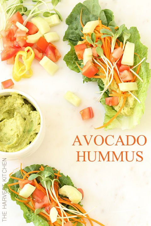 This Avocado Hummus is a delicious blend of guacamole and hummus