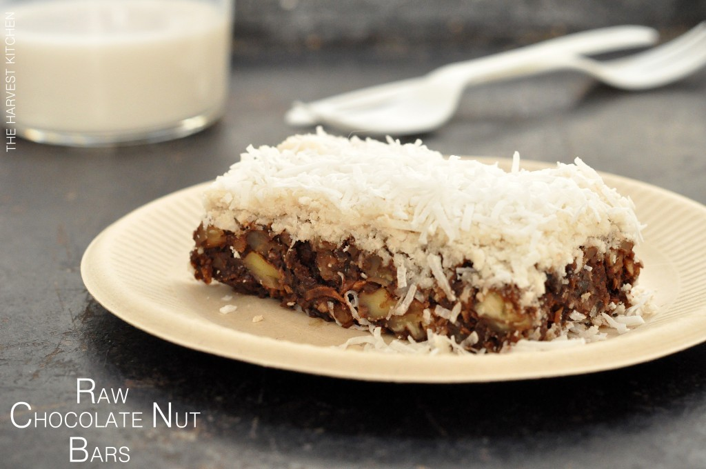 RAW-CHOCOLATE-NUT-BARS