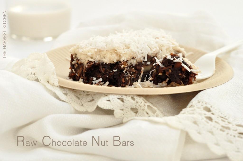 raw-chocolate-nut-bars