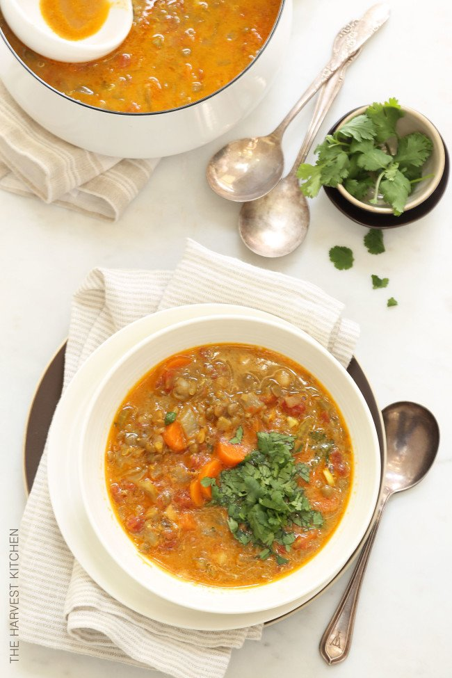 This Vegetarian Mulligatawny is made with chickpeas, dried lentils, cooked quinoa, lots of fresh organic vegetables and seasoned with coconut curry