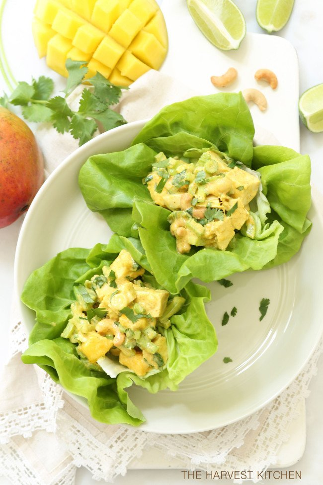 This Lighter Curried Chicken Salad with Mango is loaded with tender bites of chicken, juicy mango, roasted cashews and a light and creamy curried spiced dressing
