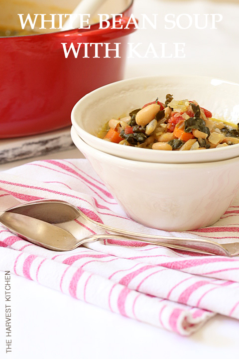 This White Bean Soup with Kale is loaded with onions, carrots, celery, garlic, beans and kale