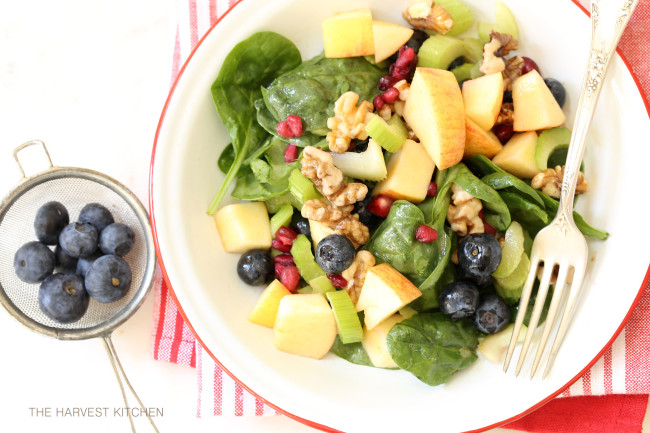 spinach-berry-antioxidant-salad