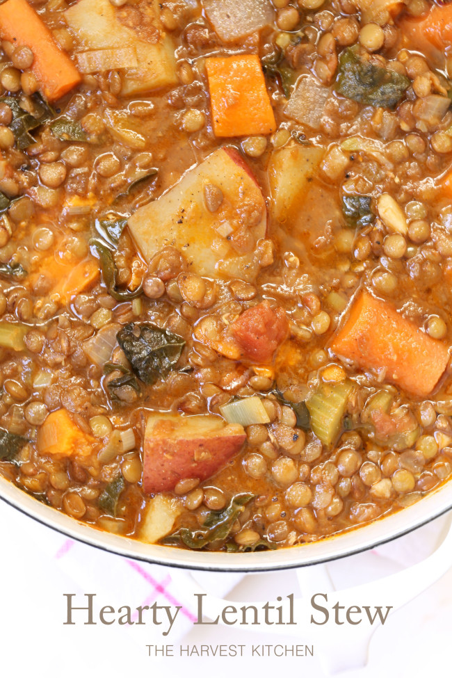 pot of vegan stew with lentils and vegetables