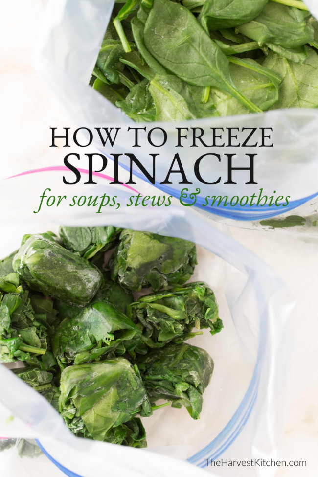 Learn How to Freeze Spinach so you always have a stash of spinach on hand to add to soups, stews, skillets and smoothies