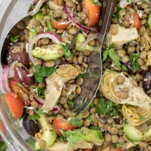 Bowl of tossed lentil salad