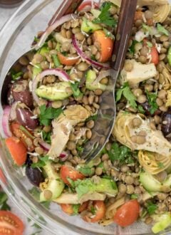 Bowl of tossed lentil salad