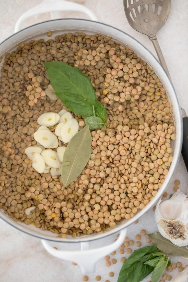 pot with dried lentils