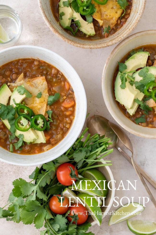 bowls of Mexican lentil soup