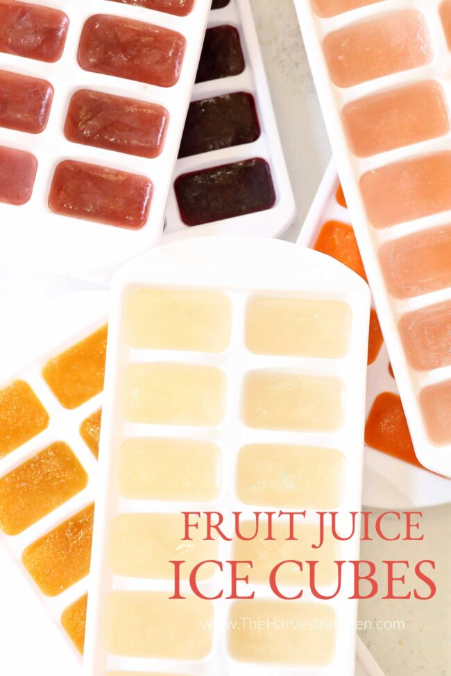 fruit juice ice cubes for flavored water